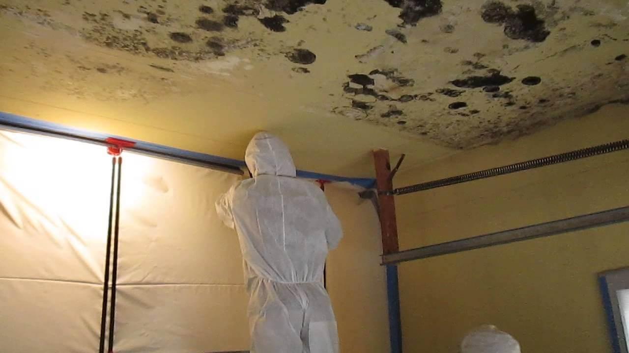 làm sạch trần nhà bị mốc