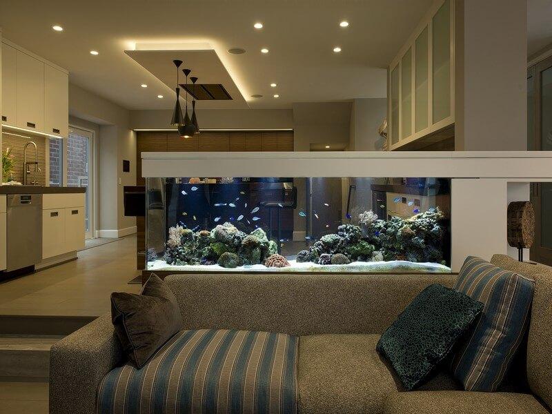 bố trí bể cá trong phòng khách theo phong thủy