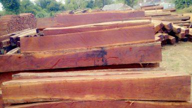 Tìm hiểu gỗ căm xe là gì? Gỗ căm xe thuộc nhóm mấy?