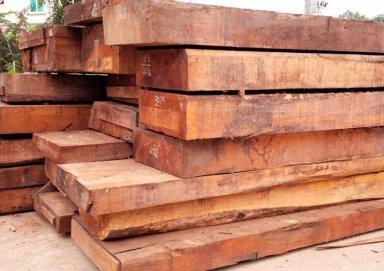 Gỗ gụ là gì? Các đặc tính và ứng dụng của gỗ gụ